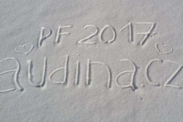 pf2017audina